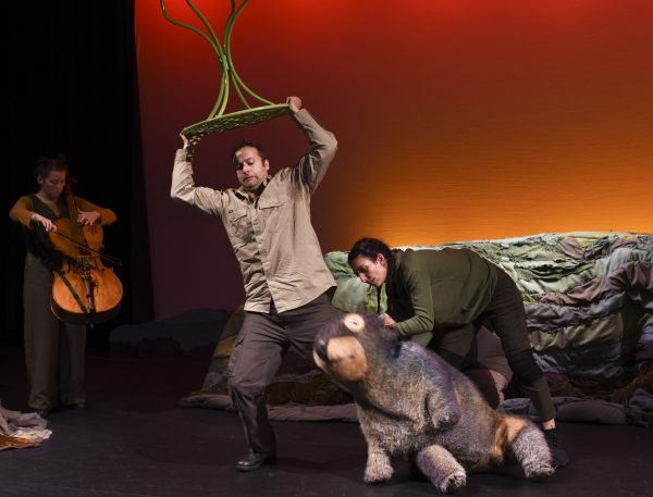 The Diary of a Wombat will be on stage at the Lake Kawana Community Centre