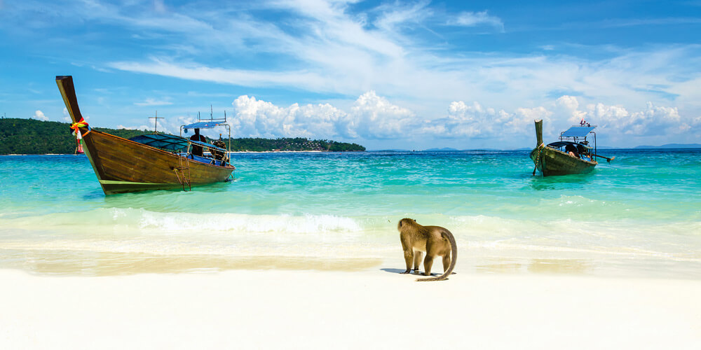 Thailand's Monkey Beach in the Phi Phi islands