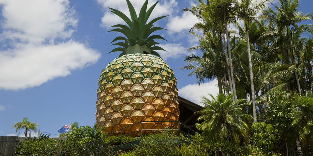 The Big Pineapple development project will see the tourist attraction brought back to life