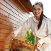 As amateur beekeeping continues to rise in popularity My Weekly Preview discovers there is a bright future for urban beekeepers.
