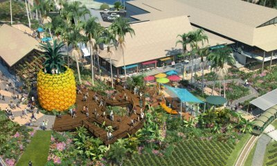 Moves are underway to return the Big Pineapple to its glory days, with $6.8 million in federal funding giving the renewal project a major boost.